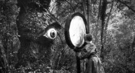 treelore-earthstoriez