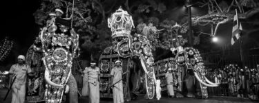 Myth and Folklore of Buddhas Tooth Relic and the Kandy Esala Perahera Festival